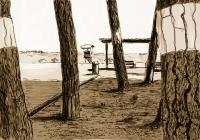 Postcard | la pineda | 2008